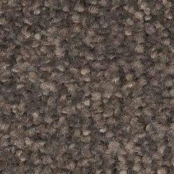 Black Carpets for Bedroom