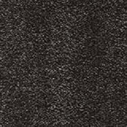 Black Indoor Carpets