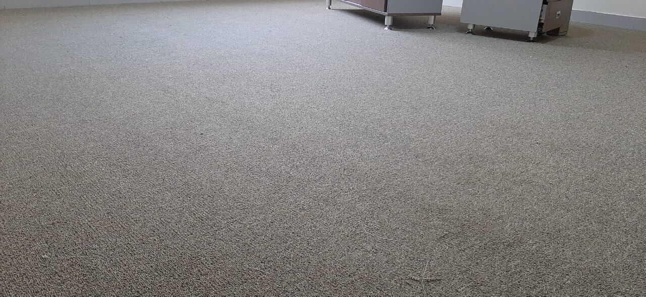 Office Carpet Installation