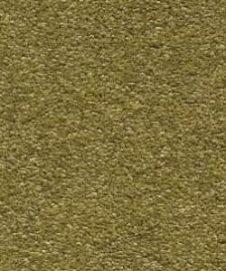 green carpet flooring