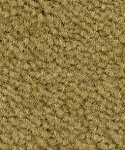green carpet for living room