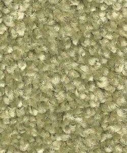 light green carpet