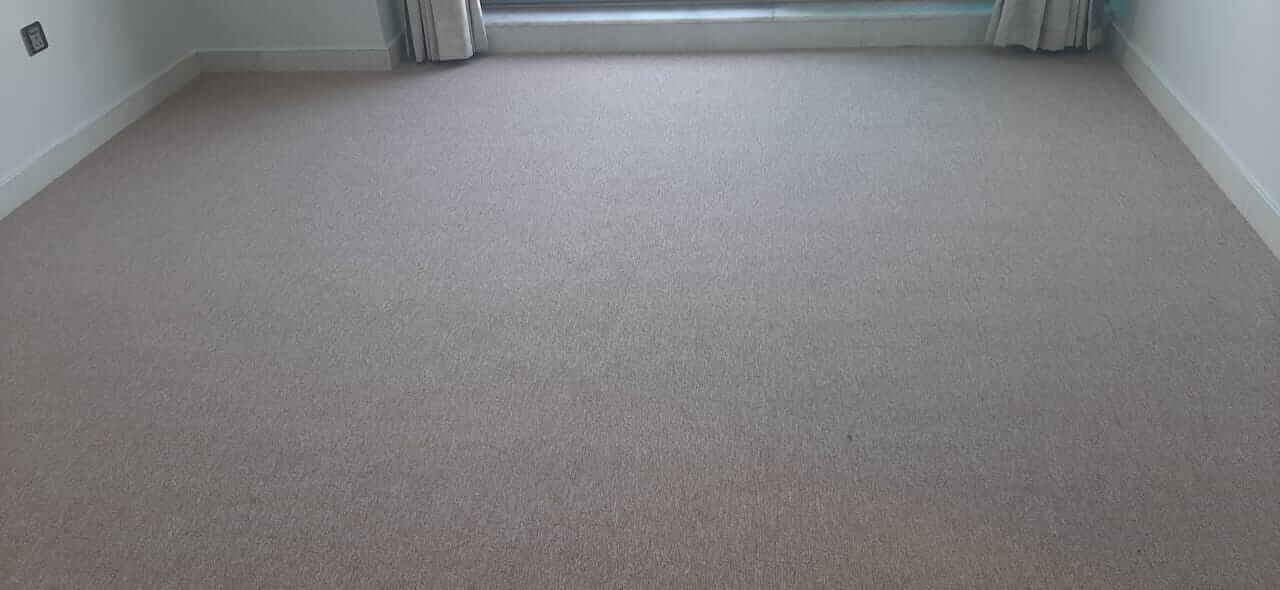 Cream Color Carpet